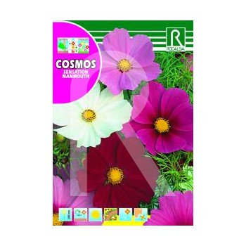 JAPANESE COSMOS MIXED 5GR.